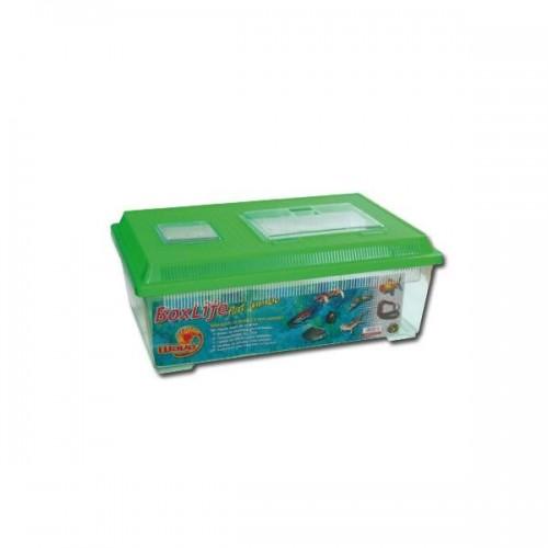 TRANSPORTIN BOX LIFE FLAT JUMBO 45x30x17.5