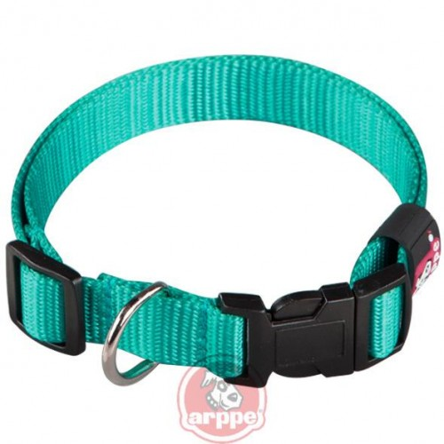 COLLAR NYLON BASIC T.45 2.5x30-44 CM TURQUESA